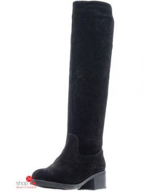 Сапоги Tervolina, цвет черный