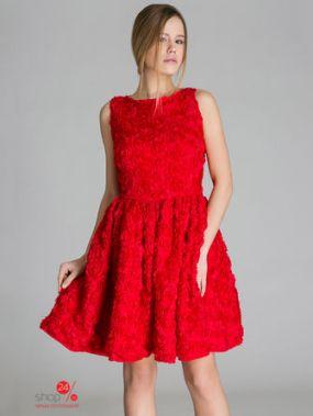 Платье Nothing but love, цвет темно-красный