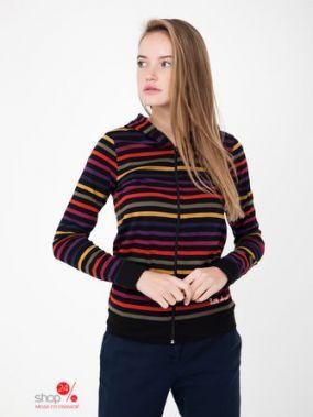 Толстовка Little Marcel, цвет разноцветный, полоска